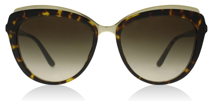 Dolce and Gabbana DG4304 Havana 502/13 57mm