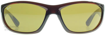 Ray-Ban RB4188 Shiny Brown