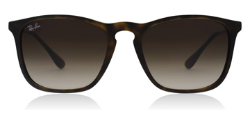 Ray-Ban RB4187 Tortoise Shell