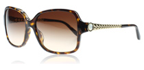 Bvlgari 8125h Tortoise and Gold 504/13