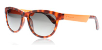 Carrera Carrera 5000 Tortoise Shell and Orange B99