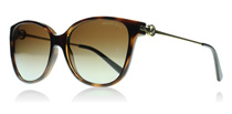 Michael Kors 6006 Tortoise and Gold 3006T5 Polarised