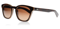 Paul Smith Rockley Tortoise 1425T5 Polarised