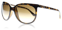 Ray-Ban CATS 1000 Light Havana 710/51