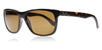 Ray-Ban 4181 Tortoise 710/83 Polarised