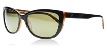 Serengeti Sophia Shiny Black Tortoise - 555NM 7890 Polarised