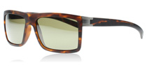 Serengeti Brera Satin Tortoise 7929 Polarised
