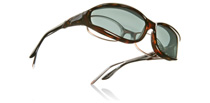 Vistana Sunglasses Small Tortoise W603G S Polarised