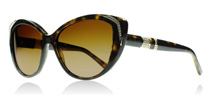 8151BM Tortoise 504/T5 Polarised